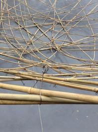 Bambou1