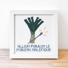 Allium Porrum Le Poireau Malefique 3