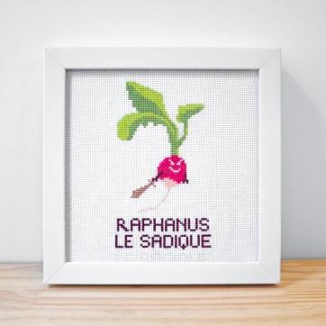 Raphanus Le Sadique2
